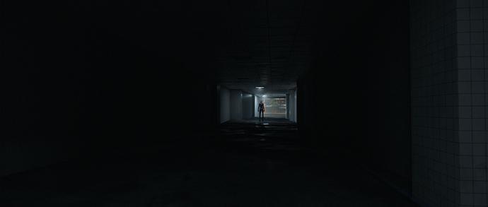 Tunnel-Ani3