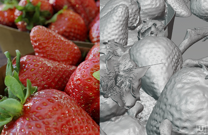 i-U%20Studios%20-%20Laserscan%20Example%20Strawberries%20%20B3D%20Allegorithmic%20Example%2002_vers2a