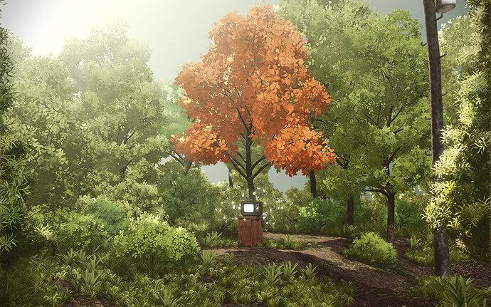 Woods03