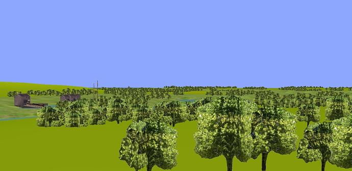 annan_many_trees