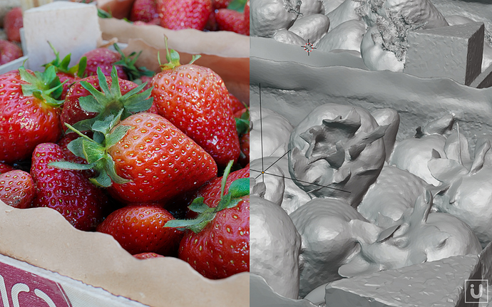 i-U%20Studios%20-%20Laserscan%20Example%20Strawberries%20%20B3D%20Allegorithmic%20Example%2017a