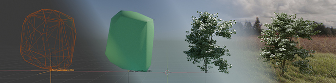 thicket-banner-2048