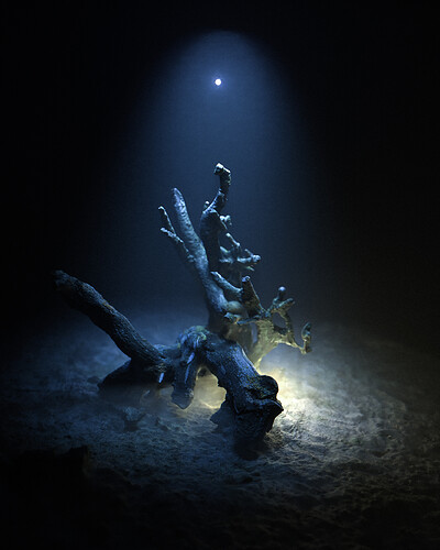 beach_tree_trunk_v2_vert