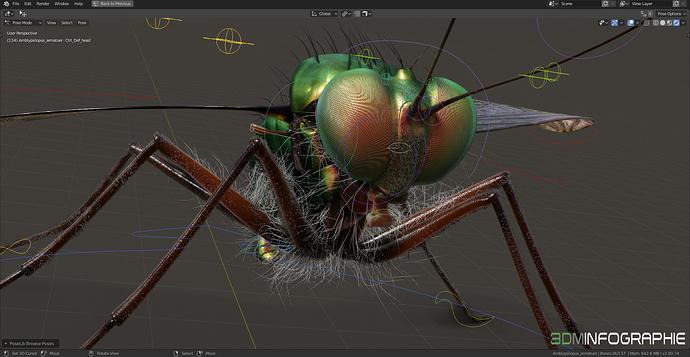 amblypsilopus_screenshot-02