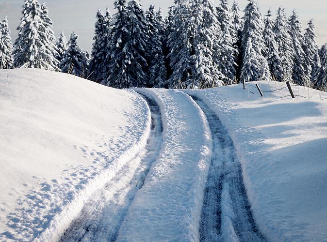 Snow1-6