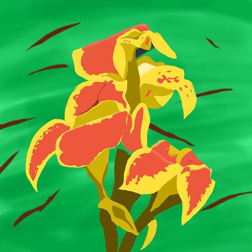 orange_flower1500Preview