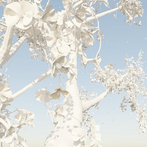 Floating Sakura Tree Blank Post Render2 2160x2160