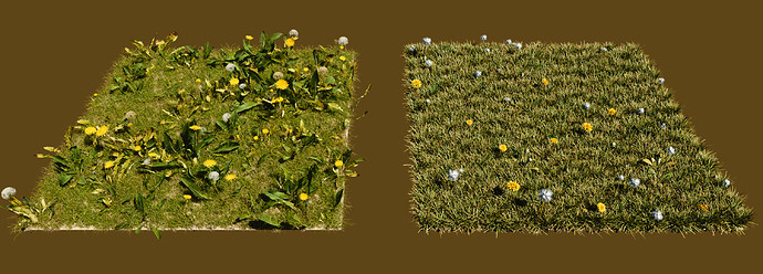 dandelions%20graswald%20and%20grass%20essentials%20side-by-side