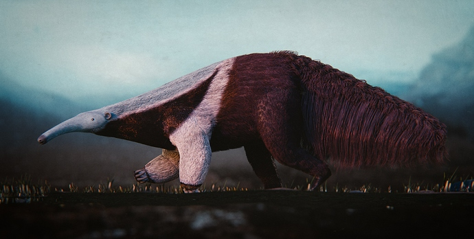 Anteater_39_pos01_compressed