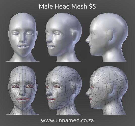 Male Head Mesh