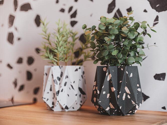 Plants_Post