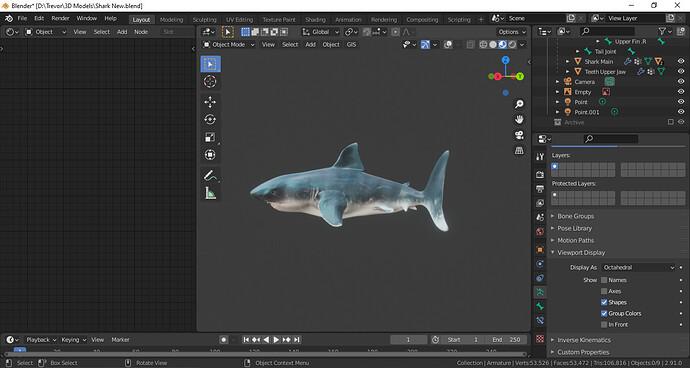 Shark Project Viewport 2.PNG