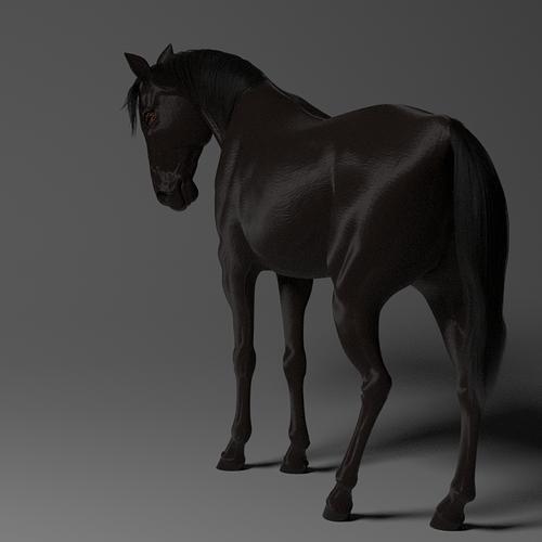 black-horse-render-principled-node-1