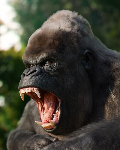 Gorilla_portfolio_1_IG