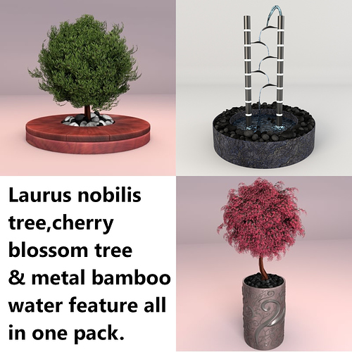 trees-laurus-nobilis-cherry-blossom-3d-model_D
