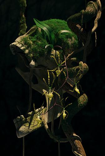 skull_orchid_bearbeitet
