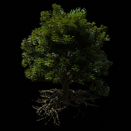 M_Tree_A_010150