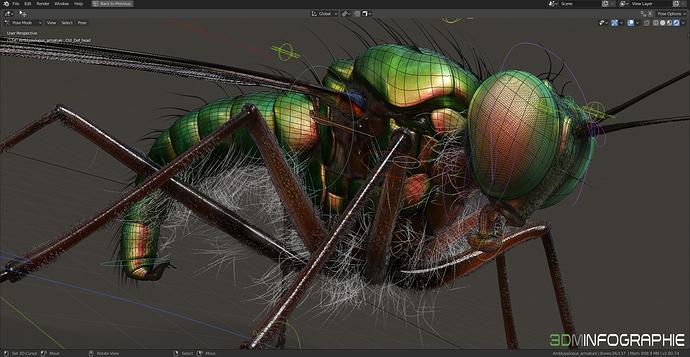 amblypsilopus_screenshot-03