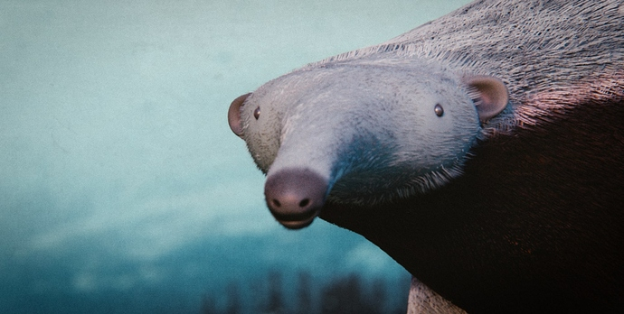 Anteater_41_pos02_compressed