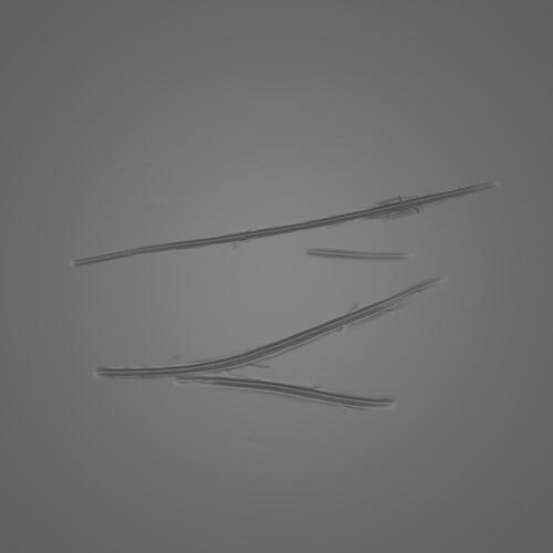 Brush_1