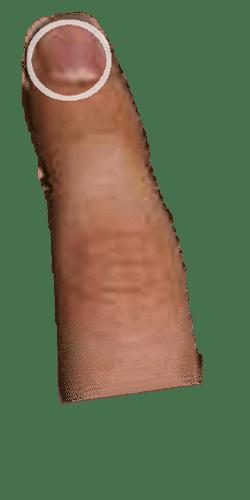 http://www.cando3d.com/blender/iphone_finger.png