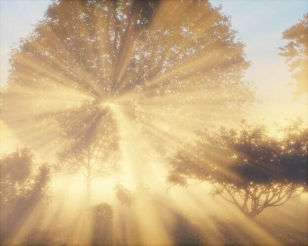 sunburst bright