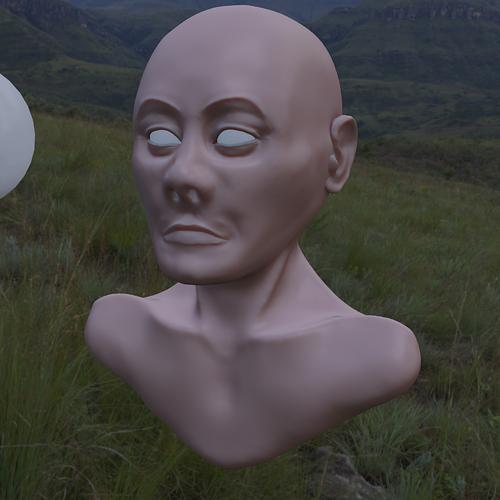 head_12