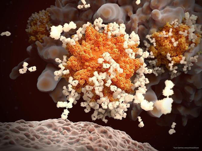 SARSCOV2_macrophage
