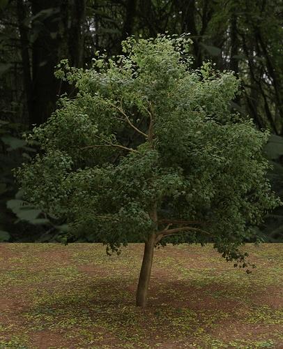 Tree_test_modular