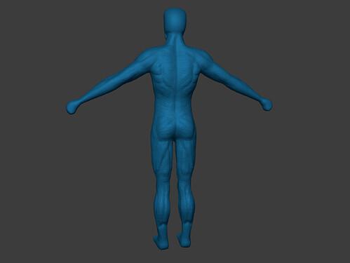 muscle_sculpting_c