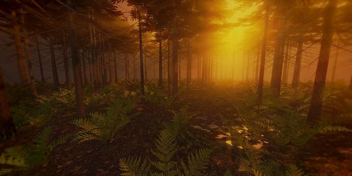 pine_forest_comp_warm