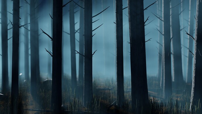 pine_forest_3