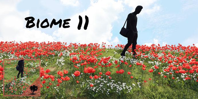 Biome11