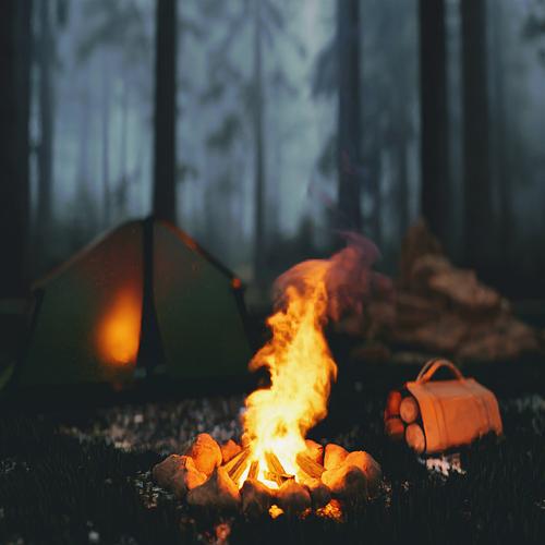 bonfire9~2