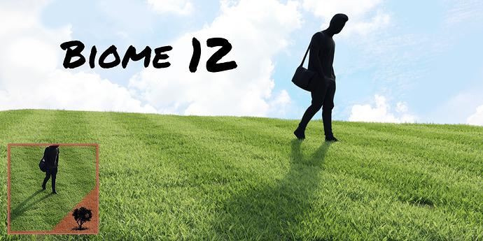 Biome12