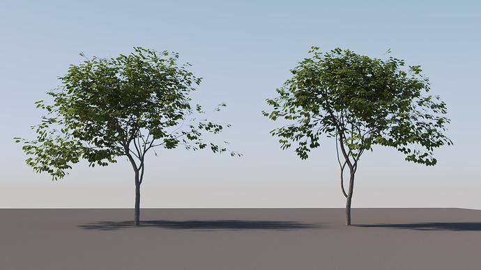 Tree_tests_01