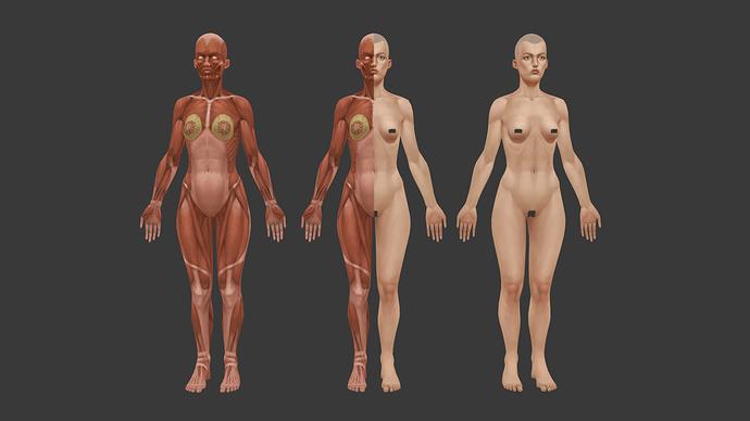 dziewczyna_anatomia_full