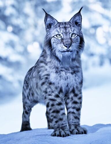 Lynx-AM_main