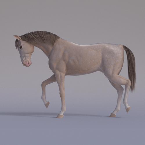 horse-portrait-render-4