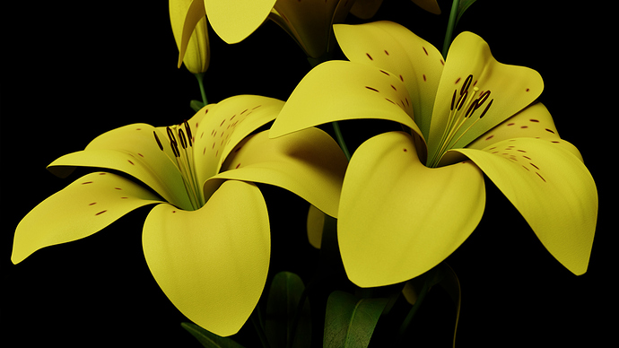 003_Lily_View