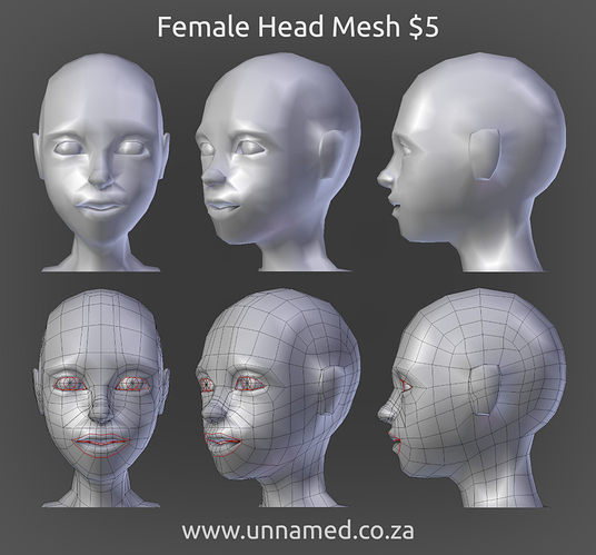 Female Head Mesh