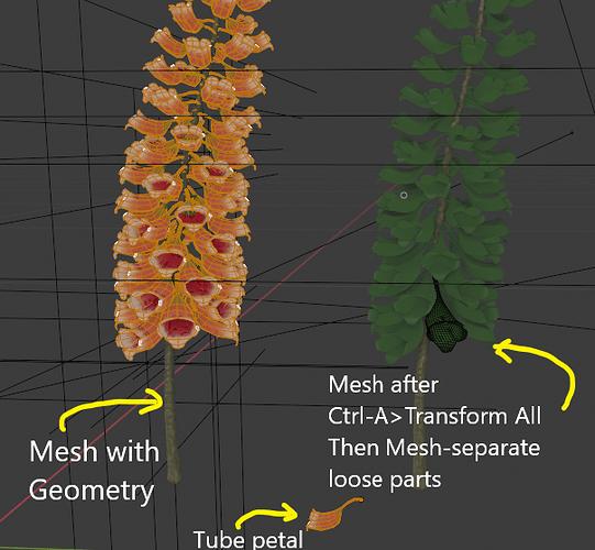Geometry-Extra-Mesh