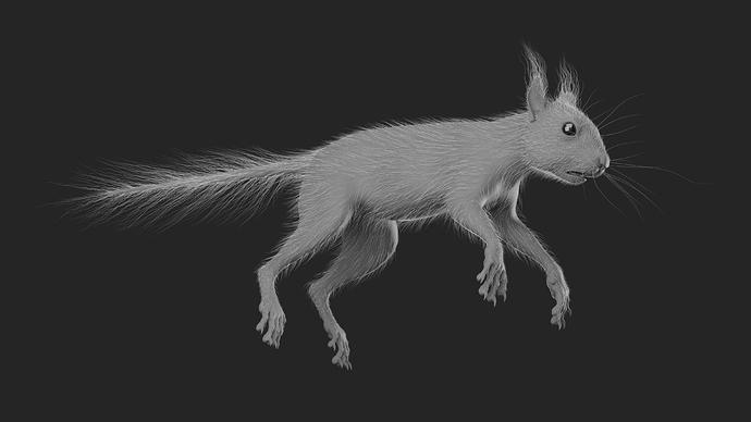 Squirrel_Osipkov_07