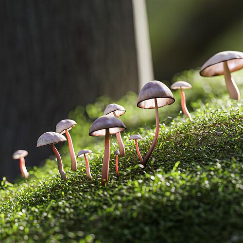 fungusv1 PS