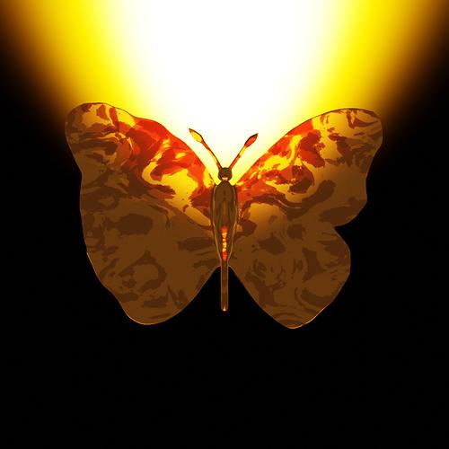 Motyl 1.0