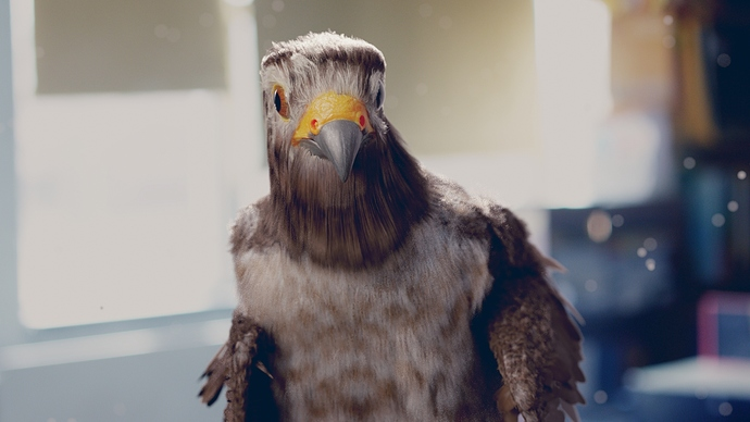 Falcon%20wink%20shot%20