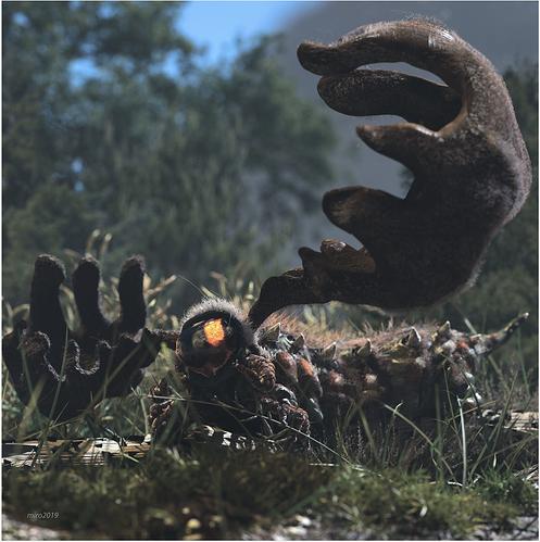 never-seen-in-broad-daylight-canadian-moose-caterpillar