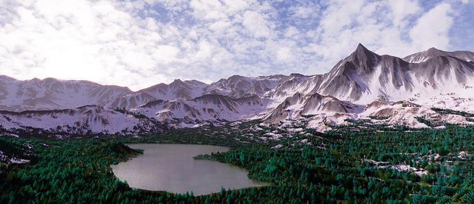 Mountain Forset