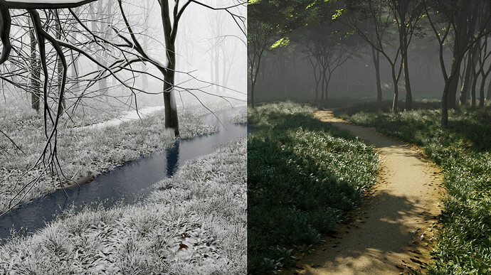 forest by season 02