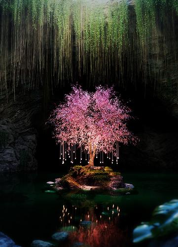 ColiN00B: Mystic Cavern
